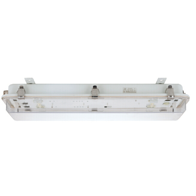 Marine fluorescent light wenzhou yihai trade gmbh jcy fluorescent pendant light aloadofball Images